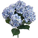 FRE - Ramo de 7hortensias artificiales, seda, color azul celeste