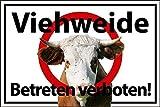 Betreten verboten Schild -554s- Weide 29,5cm * 20cm * 2mm, mit 4 Eckenbohrungen (3mm) inkl. 4 Schrauben