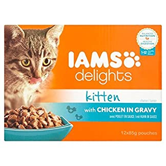 IAMS Delights Kitten Chicken in Gravy 12 x 85g 5