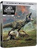 Jurassic World: Fallen Kingdom 4K Ultra HD [4K Ultra HD + Blu-ray + Digital - Édition boîtier SteelBook]