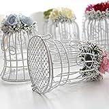 Sharplace Vogelkäfig Form Geschenkbox Gastgeschenke Verpackung mit Blumen Dekor Hochzeit Tischdeko - Rose