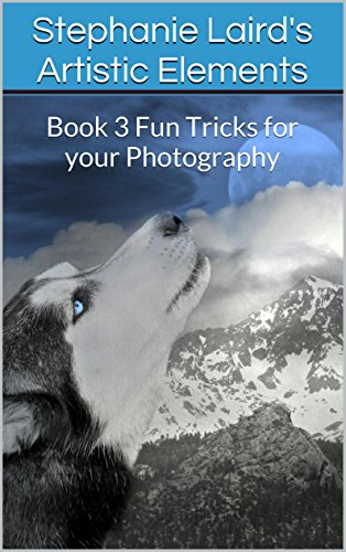 Stephanie Laird's Artistic Elements: Book 3 Fun Tricks for Your Photography (Book 3 of 3) (English Edition)