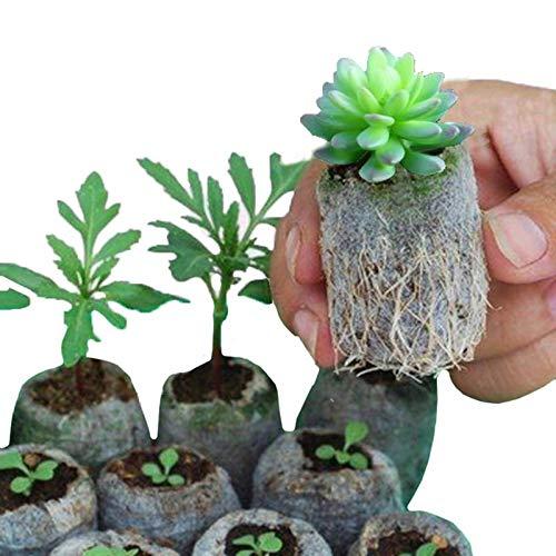 Grow Bags - 100pcs 8 10cm Degradable Environmentally Friendly Seedling Bags Non Woven Plant Nursery Gardening - Drawstring Kids Vegetables Plastic Tomatoe Half Rectangular Mushroom Recta Oval Tray-rack
