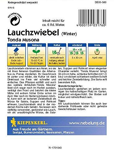 Lauchsamen – Lauchzwiebeln Tonda Musona (Winter) von Kiepenkerl