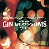 Songtexte von Gin Blossoms - Congratulations I'm Sorry