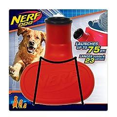 Idea Regalo - Hasbro Nerf - Palle da Tennis per Cani, Misura Media, Confezione da 2