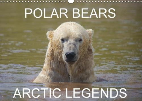 POLAR BEARS - ARCTIC LEGENDS (Wall Calendar 2018 DIN A3 Landscape): 2 Male Polar Bears compete in a test of strength. (Monthly calendar, 14 pages ) ... [Kalender] [Apr 01, 2017] Cumming, Lister
