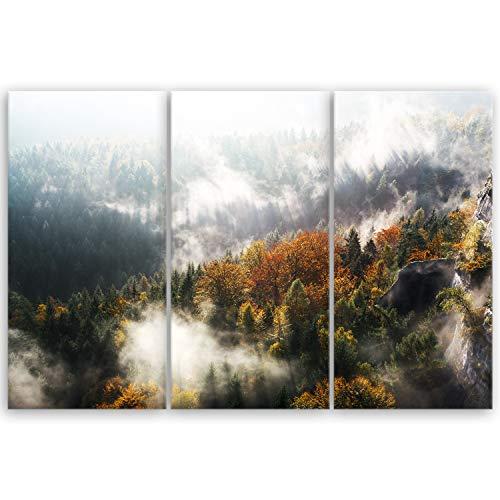 ge Bildet® hochwertiges Leinwandbild - Sächsische Schweiz - Deutschland - 90 x 60 cm mehrteilig (3 teilig) 3087B