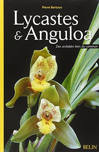 Lycastes et Anguloa : Des orchidées hors du commun par Pierre Bertaux