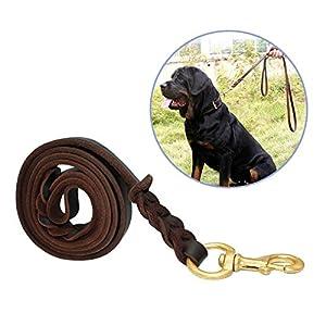 Focuspet - Laisse en cuir tressé solide pour grands chiens avec 2 poignées et mousqueton en métal, pour dressage ou promenade (marron, 1,8mx 1,5cm).