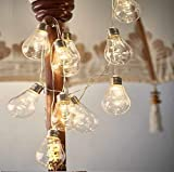 Best Outdoor String Lights - Shining Decors Battery Operated LED Fairy Lights String Review