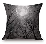 Best Chaises Office Star Patio - Decorative Cotton Square Throw Pillow Case Cushion Cover Review