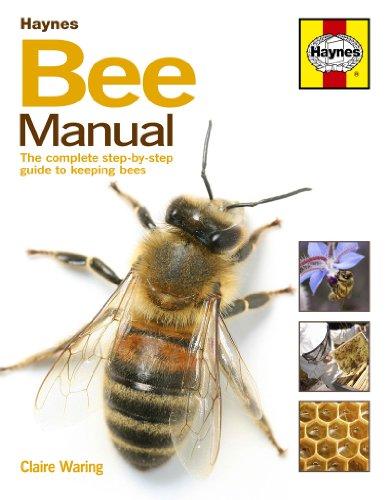 Preisvergleich Produktbild Haynes Books Bee Manual - The complete step-by-step guide to keeping bees, Anleitung zur Haltung von Bienen, einschließlich AA Magic Mitt Mikrofaser-Handschuh (in englischer Sprache)