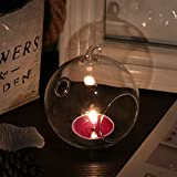 Freebily 6 X Windlichtkugel Teelichthalter Glaskugel Pflanzenkugel Weihnachten Motive Beleuchtung für Christbäume Hochzeitsdeko 8cm 10cm 12cm Transparent 12CM