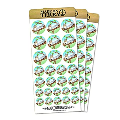 Sassy Squirrel Removable Matte Sticker Sheets Set