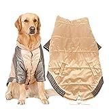 PLHF Hundekleidung Dickere zweibeinige Kleidung Großer Hundemantel Sibirischer Husky Golden Retriever Satsuma Kleidung für Haustiere Labrador Großer mittelgroßer Hund Herbst- und Winterkleidung , champagne color , 7xl