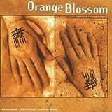 Songtexte von Orange Blossom - Orange Blossom