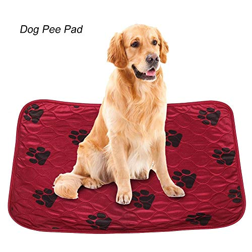 Delaman Dog Pee Pad Lavabile Dog Peeing Holder Tappetino per Urina Impermeabile Riutilizzabile per Cani da Compagnia Gatti Rossi (Size : S)