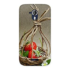 Gorgeous Straberry Basket Multicolor Back Case Cover for Micromax Canvas Magnus A117