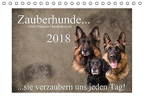 Zauberhunde... sie verzaubern uns jeden Tag! (Tischkalender 2018 DIN A5 quer): Zauberhunde... sie zaubern einem jeden Tag ein Lächeln ins Gesicht und ... [Kalender] [Apr 01, 2017] Hofer-Ott, Nadine