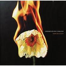 Flor De Fuego by Caramelos De Cianuro (2007-11-13)