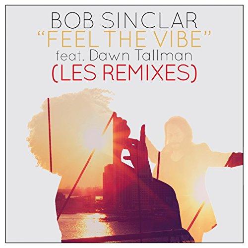 feel-the-vibe-feat-dawn-tallman-mattias-akami-remix