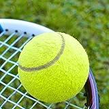 Sungpunet tennis Ball sport torneo Fun cricket Beach Dog attività gioco giocattolo per bambini da esterno