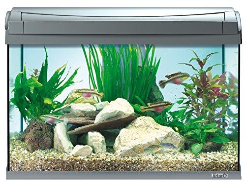 Tetra AquaArt Discovery Line LED Aquarium-Komplett-Set  60 Liter anthrazit (inklusive LED-Beleuchtung, Tag- und Nachtlichtschaltung, EasyCrystal Innenfilter und Aquarienheizer, ideal für Zierfische) - 5
