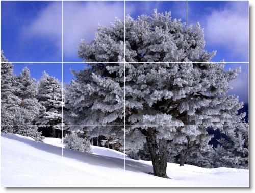 INVIERNO FOTO BAñO AZULEJO MURAL W092  18X 24CM CON (12) 6X 6AZULEJOS DE CERAMICA