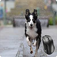 BGLKCS Mouse Pad Fabric Topped Rubber Backed Border Collie Intelligence Obedience Dog Puppy Canine