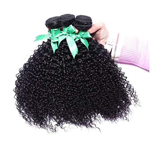 AJIAFA Frau Haarvorhang 150% Dichte Brasilianisches Jungfrau Haar tief Lockige Welle Menschliches Haar Verlängerungen 1 Bündel,Black,14inches (Volle Spitze Menschliches Haar Verlängerung)