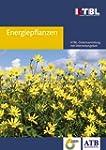 Energiepflanzen: Daten für die Planun...