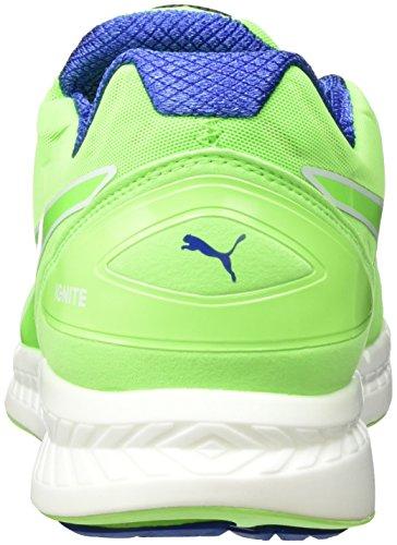 Puma Ignite Disc, Chaussures de course homme Grün (green gecko-surf the web 01)