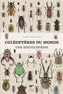"Afficher ""Coléoptères du monde"""