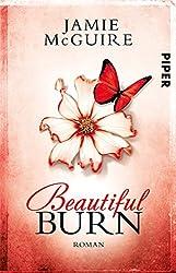 Beautiful Burn: Roman (Maddox-Brüder 4)
