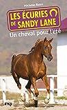 Best Enfants Livres préférés Pour 9 ans filles - Les écuries de Sandy Lane T.1 : Un Review