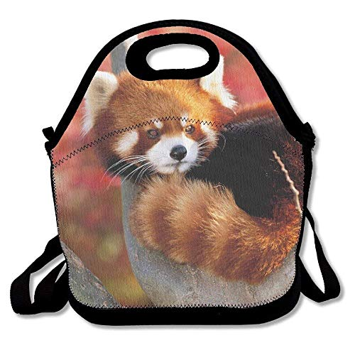 6c6e72bd5513 Dozili Red Panda Large & Thick Neoprene Lunch Bags Insulated Lunch Tote  Bags Cooler Warm Warm Pouch with Shoulder Strap for Women Teens Girls Kids  ...