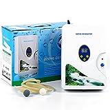 Ozon Générateur d'ozone 600 mg/h Air Purifier Ozone Générateur d'ozone Détoxifiant