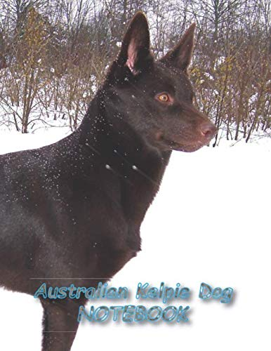 "Australian Kelpie Dog NOTEBOOK: notebooks and journals 110 pages (8.5""x11"")"