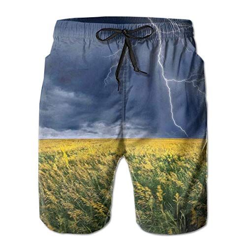 MIOMIOK Mens Beach Shorts Swim Trunks,Thunder Bolt Above The Seasonal Field Electric Vibes Mother Nature Theme Image,Summer Cool Quick Dry Board Shorts Bathing SuitM