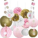 Ailiebhaus 19 Stücke Deko-Set Tissue Seidenpapier Pom Poms Blumen Laternen und Polka Dot Girlande für Hochzeit Party Dekorationen