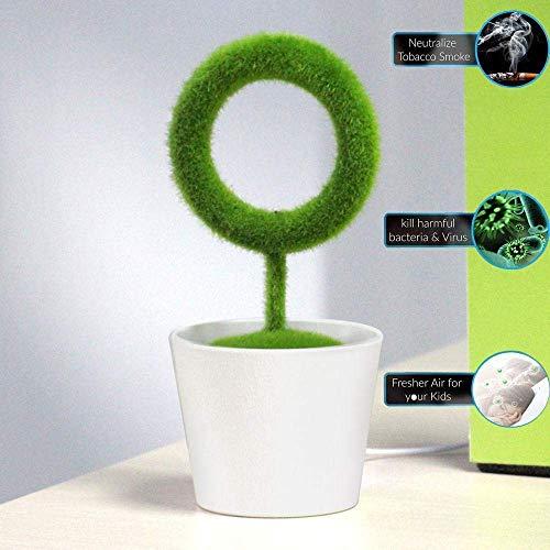 Wald Kerze Duft (GLXLSBZ Luftreiniger Air Purifier mit True HEPA Filter, Luftreiniger Entfernt Allergie, Staub, Schimmelsporen, Pollen, Haustiere Dander und Geruch)