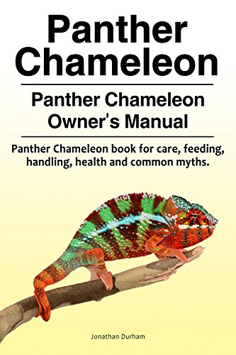 Panther Chameleon Owner's Manual. Panther Chameleon book for feeding, care, common myths, health and handling. Panther Chameleon as pets. (English Edition) por Jonathan Durham