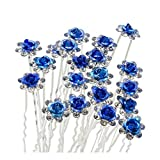 Lovely Charm 20pcs Wedding Bridal Party Diamante and White Faux Prom Pearl Flower Rhinestone Crystal Hair Pins Clips Grips Pins Hairpins Bridesmaid Clips (Blue)
