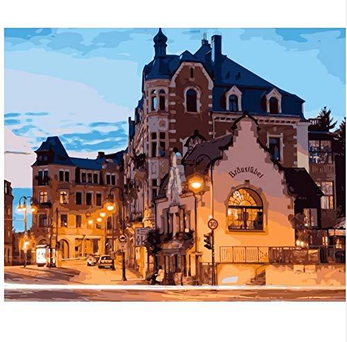 LIWEIXKY Rahmenloses Ölgemälde Deutschland Dresden Nacht Haus Stadt DIY Färbung Durch Zahlen Wanddekoration Malerei 40X50Cm -