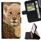 Graphic4You Baby Tiger Tier Design Brieftasche Leder Dünn