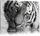 Pixxprint bildschöner Tiger schwarz/weiß auf Leinwand, XXL riesige Bilder fertig gerahmt mit Keilrahmen, Kunstdruck auf Wandbild mit Rahmen, günstiger als Gemälde oder Ölbild, kein Poster oder Plakat