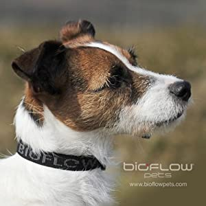 Bioflow Dog Collar Black Large Up To 65cm from Bioflow