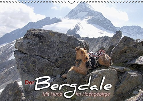 Der Bergdale - mit Hund im Hochgebirge (Wandkalender 2016 DIN A3 quer): Ein Airedale Terrier als Bergbegleithund (Monatskalender, 14 Seiten ) (CALVENDO Tiere)