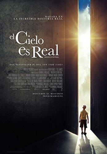 el-cielo-es-real-dvd